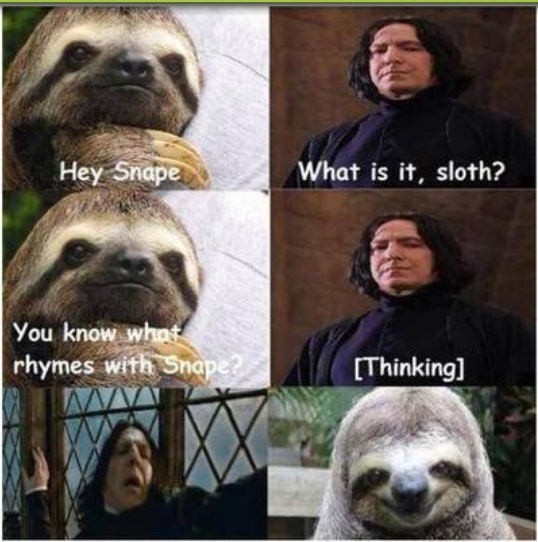 sloth - Meme by perfect_guy :) Memedroid