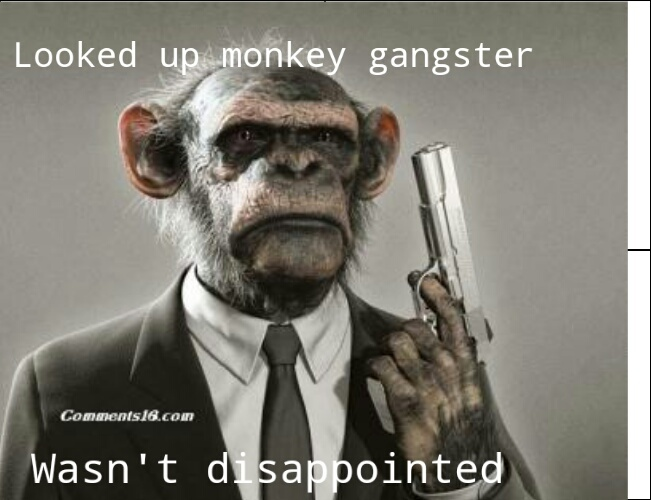 Monkey Gangster Meme By Hattie Hattington Memedroid