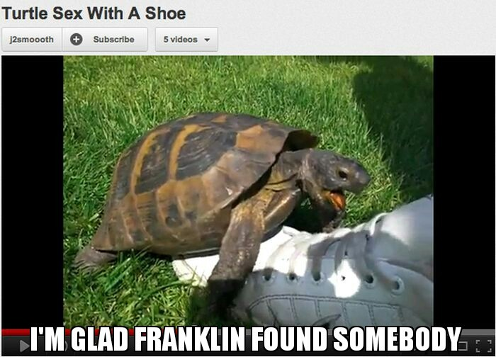 Fuck turtle sex with shoe
