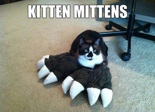 Kitten Mittens Meme Subido Por Soydolphin Memedroid Purr, purr, purr, oh, let us have some pie. memedroid