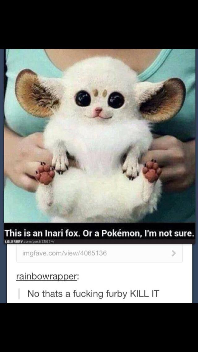 Furby Meme By Ele24 Memedroid
