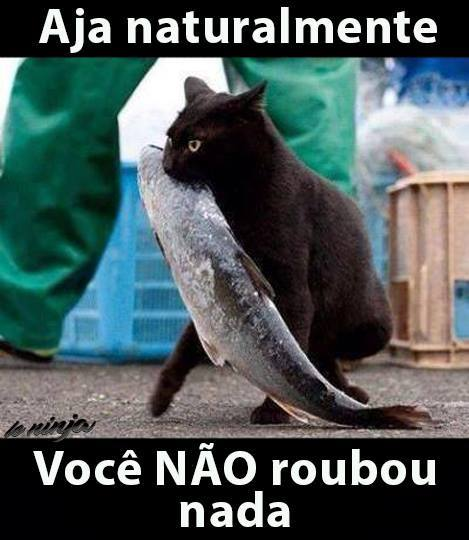roubo - Meme by jacorteicana :) Memedroid