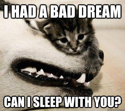 501c86f829b53 sleepy times meme by maza_k_vich ) memedroid