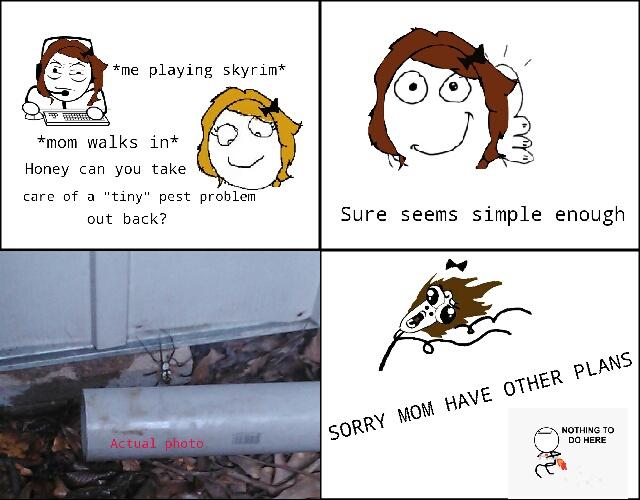 a simple mothers task - meme