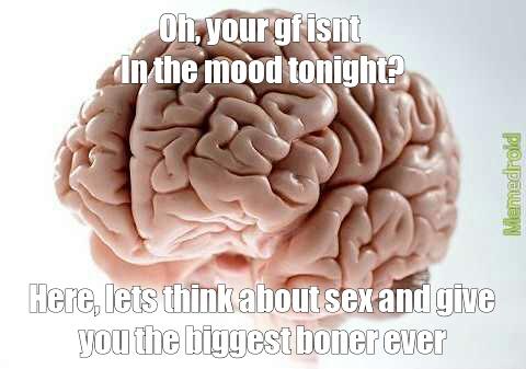 My brain 24/7 - meme