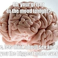 My brain 24/7