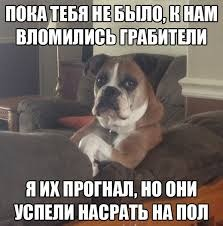 прогнал - meme