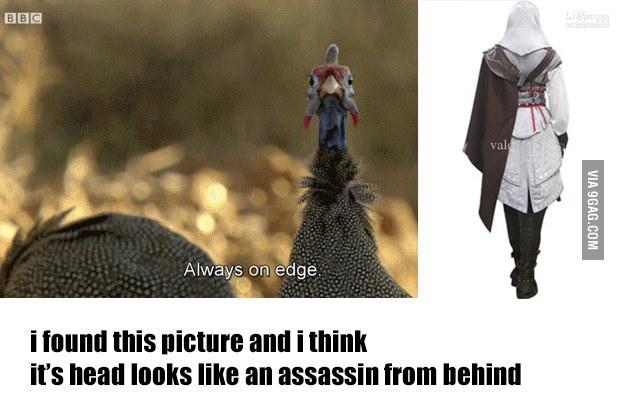 totally looks like... - meme