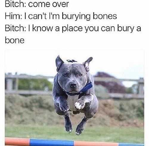 Bone - meme