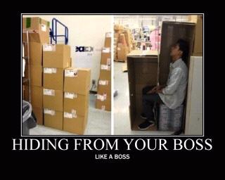 hiding like a boss - meme