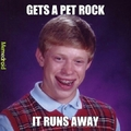 Pet rock runs away