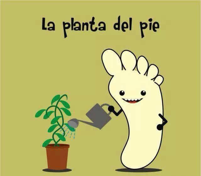 La planta del pie - meme