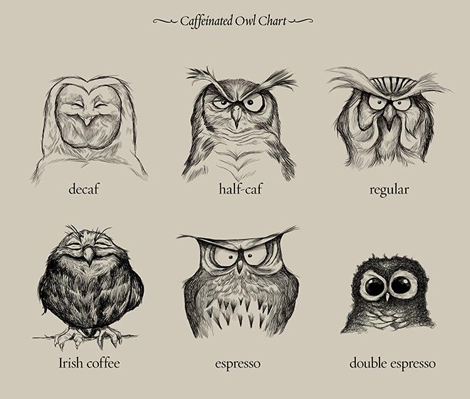 caffeine - meme