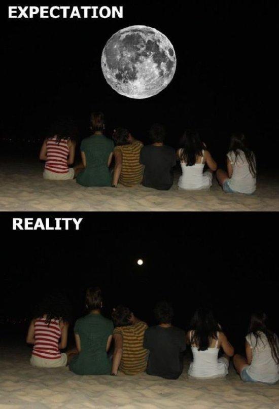 luna troleando en fotos desde tienpos inmemorables - meme