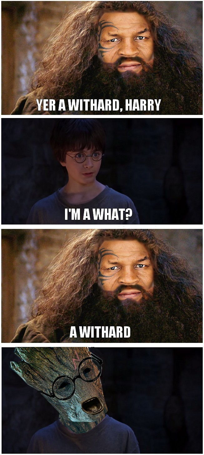 You're withered, Harry! - meme