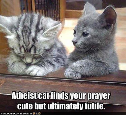 atheist cat #1 - meme