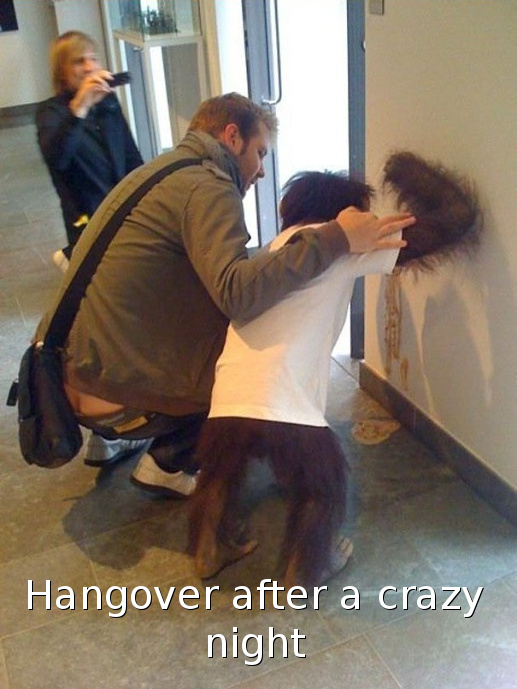 Hangover - meme