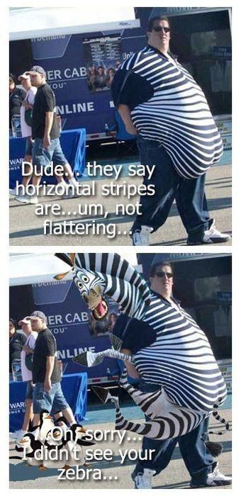 Hello mister zebra. - meme