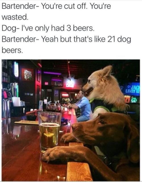 21 beers - meme