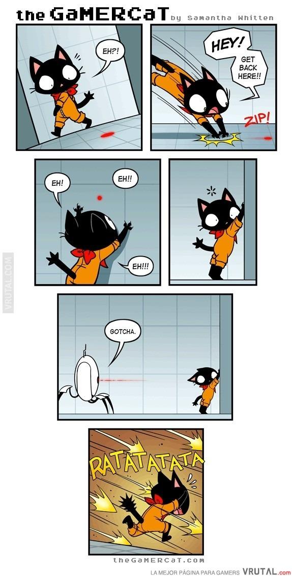 Y por eso Portal no está protagonizado por un gato - meme