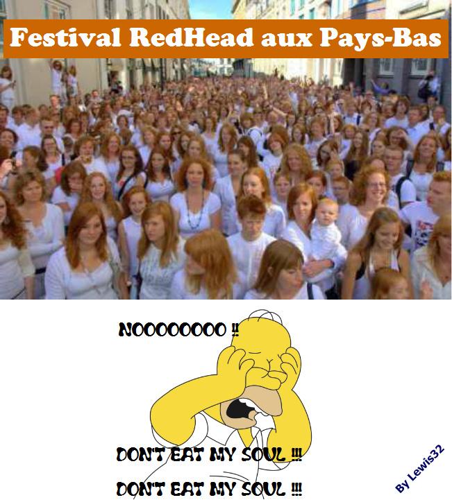 RedHead Festival aux Pays-Bas - meme