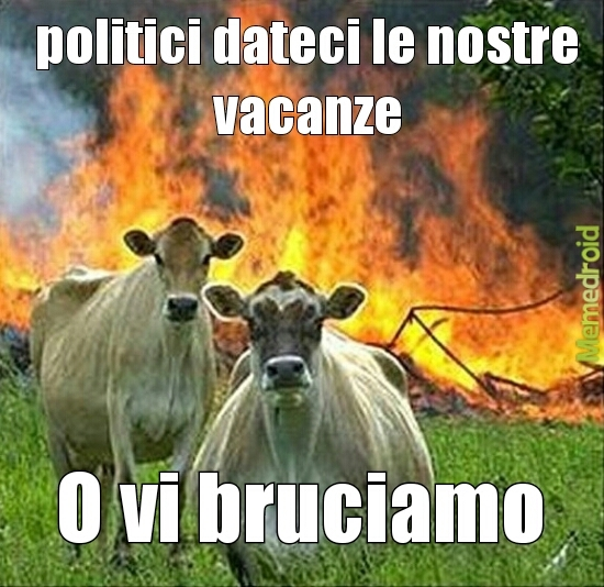 fanculo politici !!!!! - meme