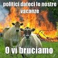 fanculo politici !!!!!