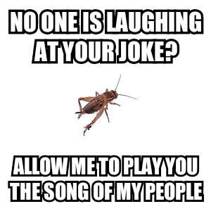 Cricket Song - meme
