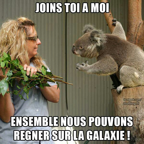 4ff44e2e55635 joins toi à moi meme by lananass ) memedroid