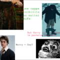 Harry gay