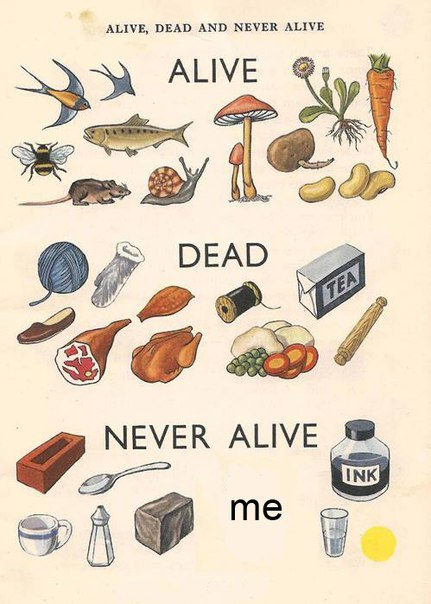 never alive - meme