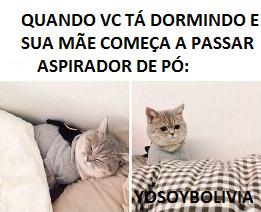 pQ MÃEEE - meme