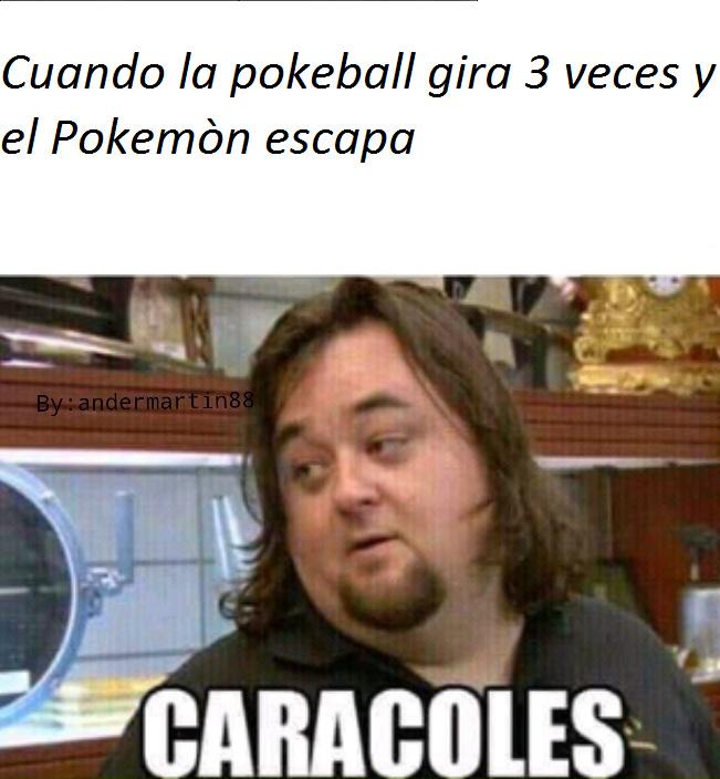 El titulo Se dedico a ser Maestro pokemon - meme