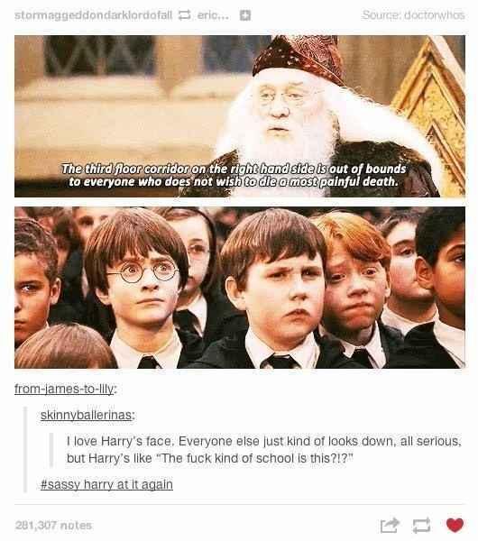 Sassy Dumbledore I say - meme