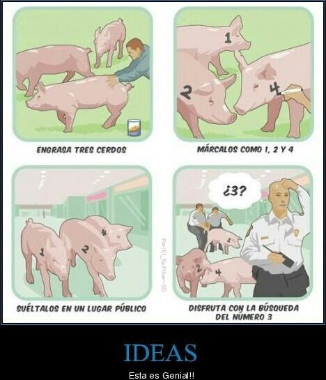 busqueda del cerdo - meme