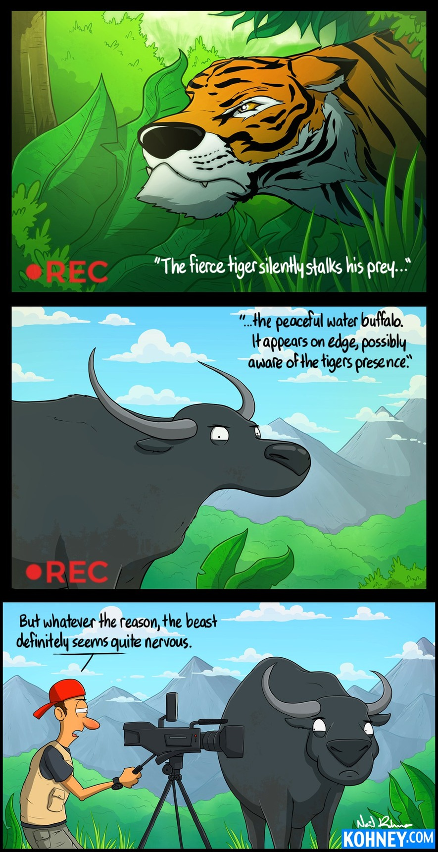 The Peaceful Water Buffalo - meme