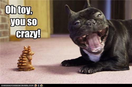 crazy kook - meme