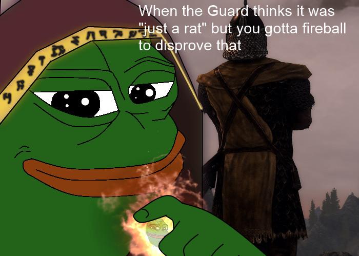 Guards in Skyrim be like - meme