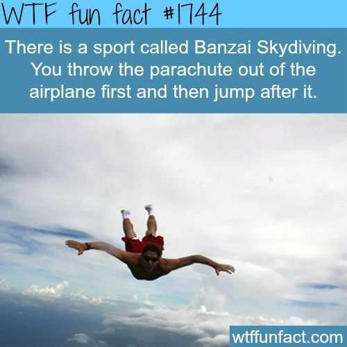 Skydiving - meme