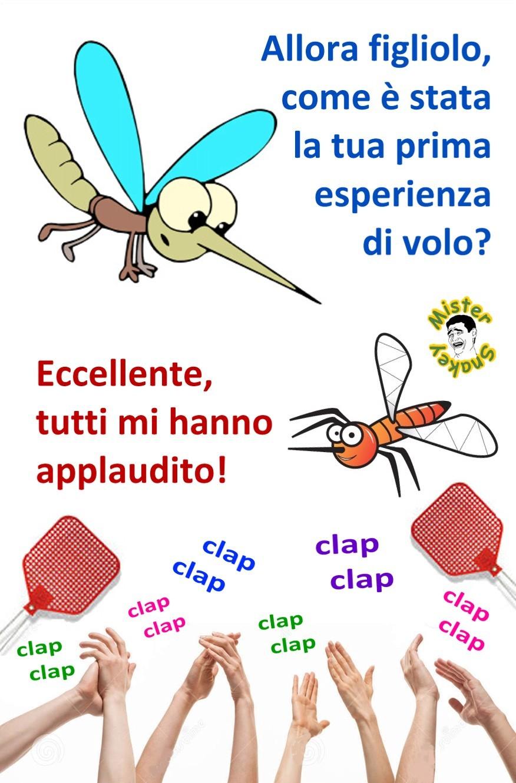 Zzzzz zanzara inesperta... - meme
