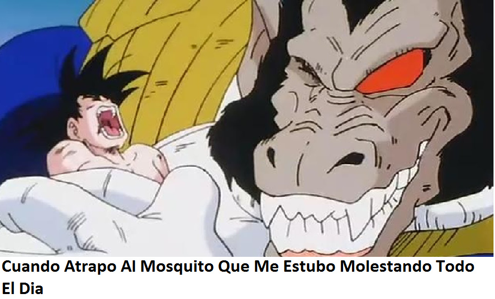 Mosquitos... - meme