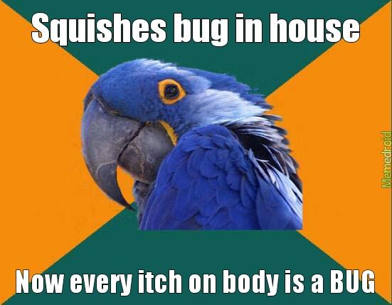 Bugs Everywhere - meme