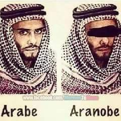 Aranobe - meme