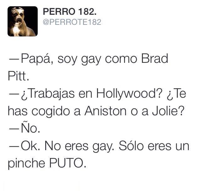 Bromas Sobre Gay Pitt  - meme