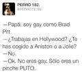 Bromas Sobre Gay Pitt