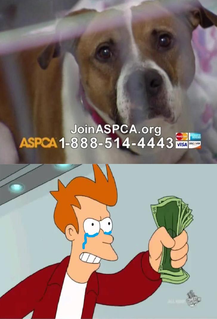 ASPCA - meme
