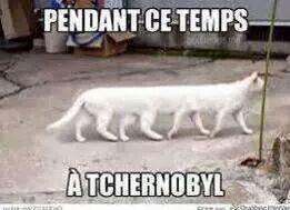 Pendant ce temps à tchernobyl - meme