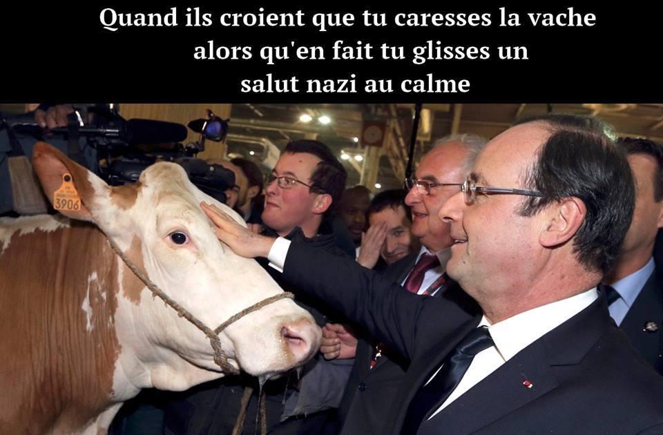 Heil vache - meme