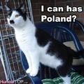 Je peux avoir la Pologne?
