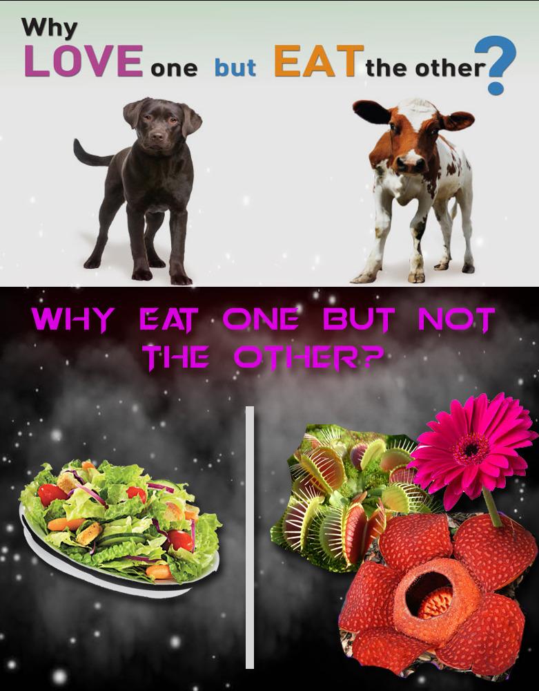 Vegetarians bruh - meme